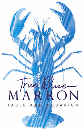 True Blue Marron